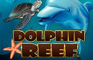 Автоматы 777 Dolphin Reef